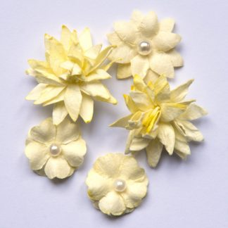 Flower Mini Series 01 - Cream